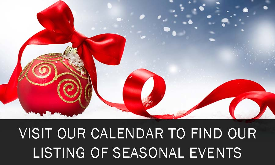 homepage-small-promo-holiday-events-xmas-small-3